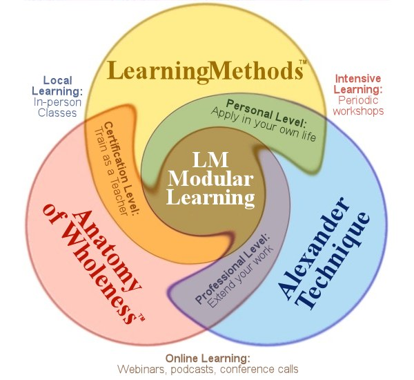 Modular Learning diagram